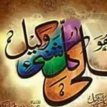 Hafiz Hamza Shabbir avatar