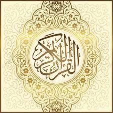 Nahed Mustafa Wahby avatar