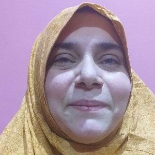 Nausheen Fida avatar